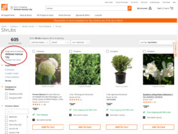 Store Finders: Why People Still Need Locator Links